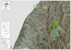 Mappa progetto esteso