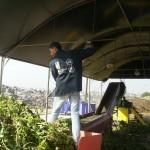 img_5_-_compost