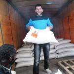 distribuzione di sementi