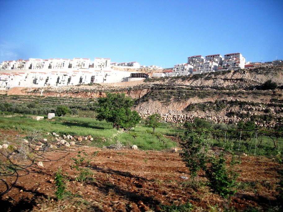 La colonia di Beitar Illit circonda le terre del villaggio di Wadi Fukin, tra Betlemme e Hebron (Foto: Nena News)