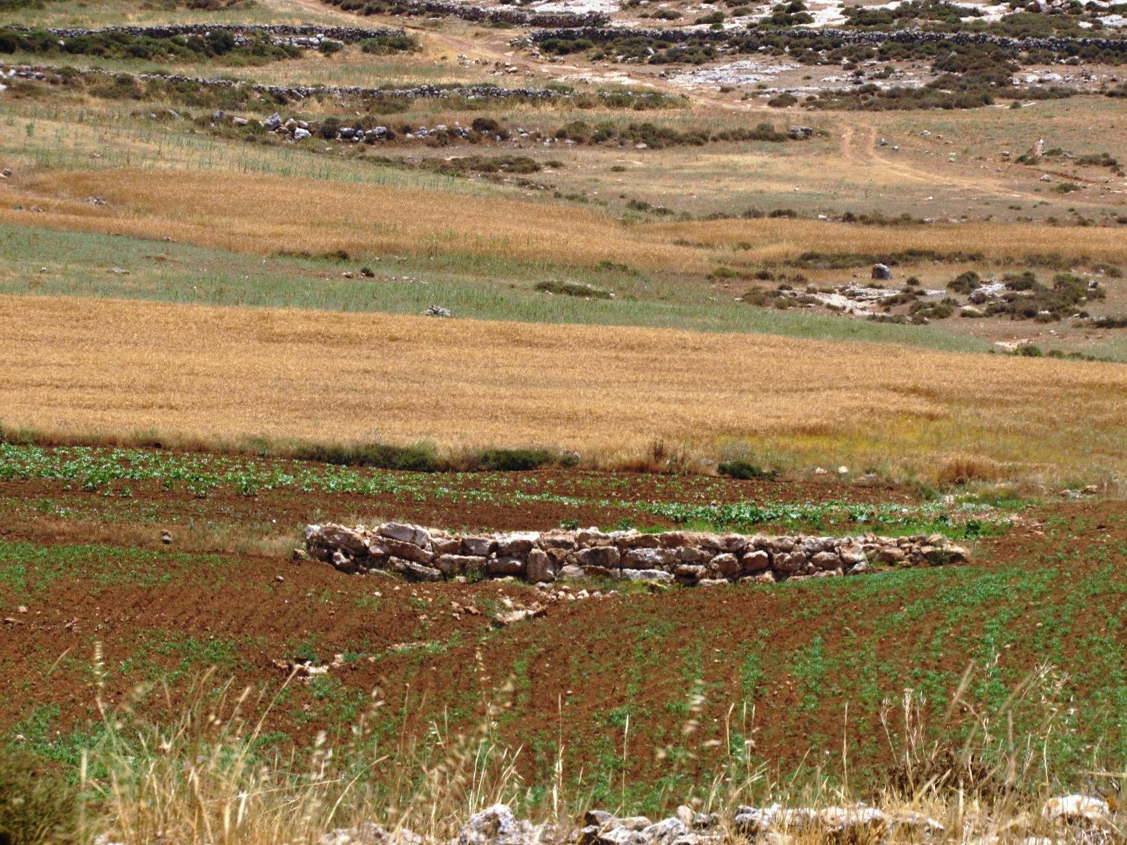 I muretti di contenimento in pietra a secco nel bacino di Somara (Foto: Nena News)